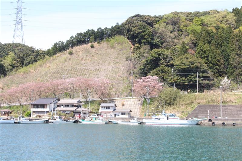 井本渡船(イモト渡船)・恵安丸